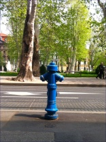 Blue fire hydrants, how cool