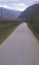 The fine Trentino bike paths...